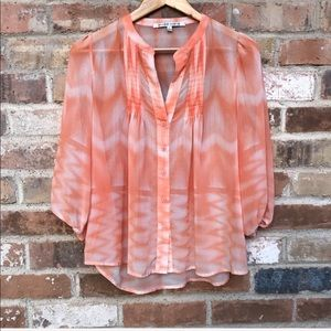 Collective Concepts Sheer Pleated Blouse Sz L